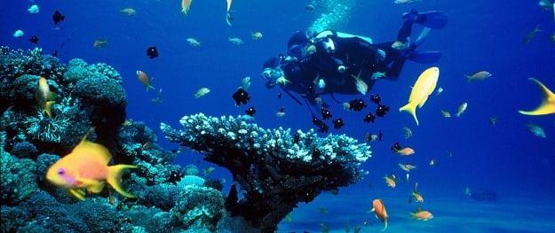 Bali Diving Tour - Bali Scuba Diving Tours