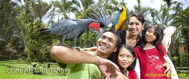 Bali Bird Park Indonesia - Bali Interst Place To Visit